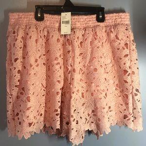 Lane Bryant Soft Pink Lace Shorts size 14/16 NWT